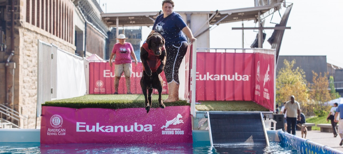 Arch Bark, a new, signature dog-centric event, is the first of its kind at the Arch park and invites St. Louisans and visitors alike, along with their furry family members, to enjoy the newly renovated park.
